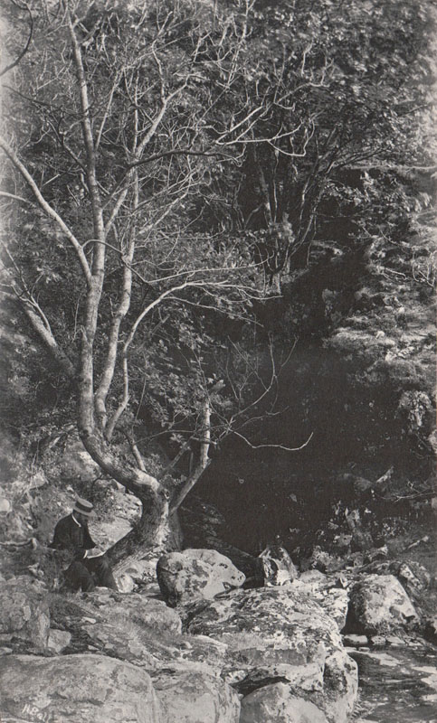 n.d. - At Cat Ghyll under Falcon Crag